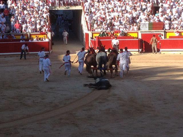 drag the bull