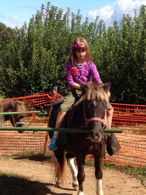 M on pony