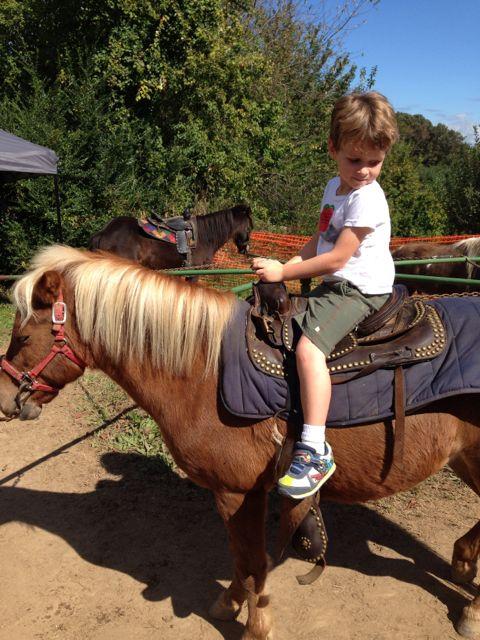O on pony
